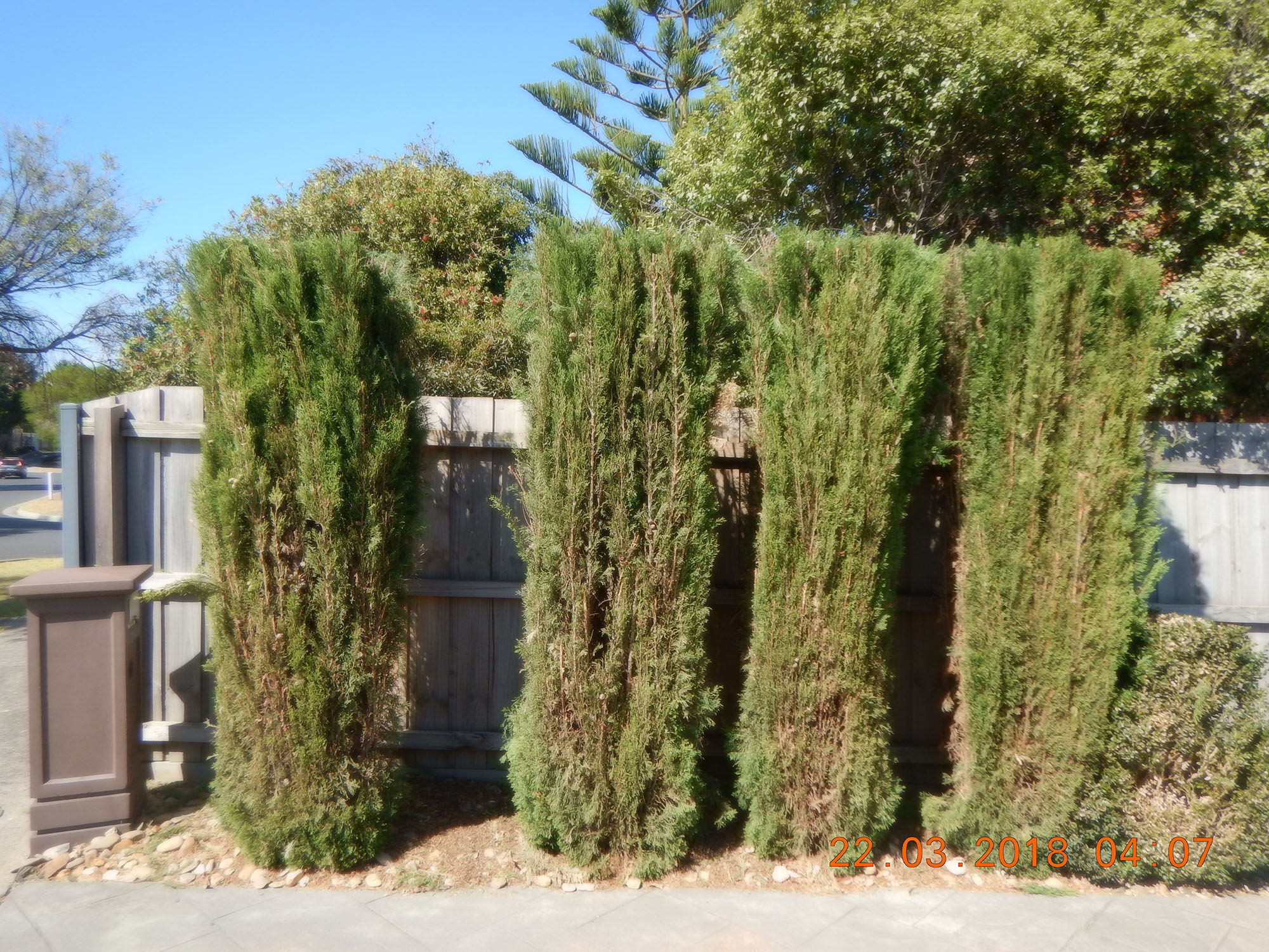 Landscaping and gardening maintenance