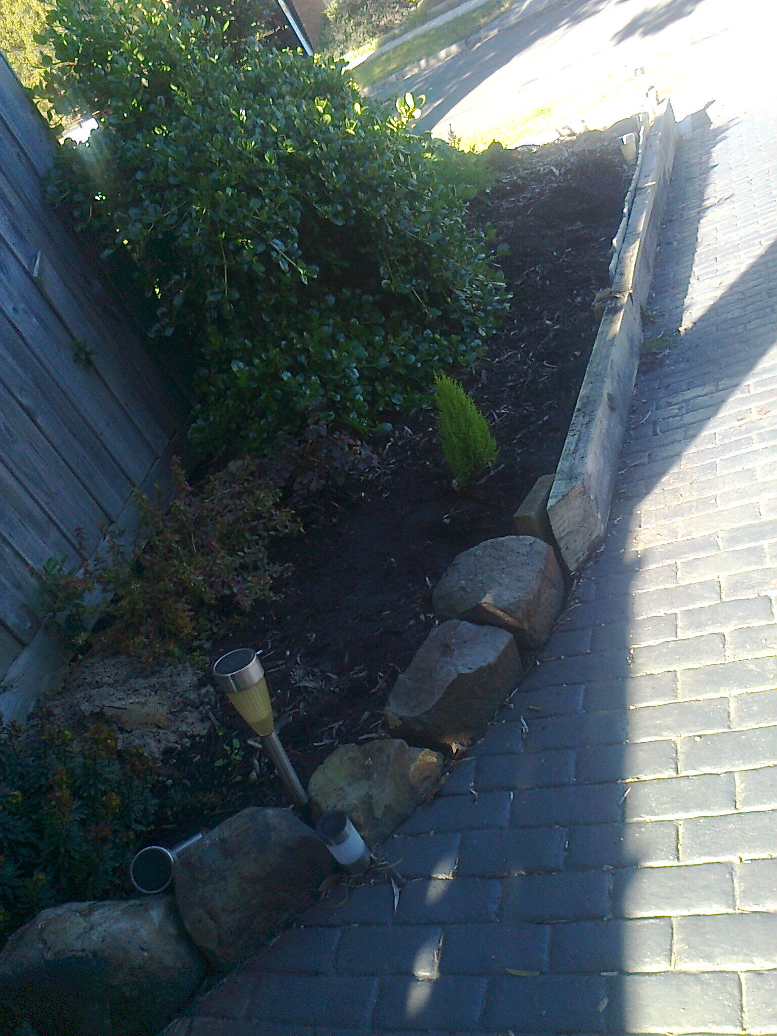 Landscaping 36